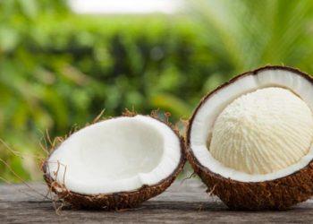 coconut embryo Archives - BIGNEWSLIVE | Latest Malayalam News