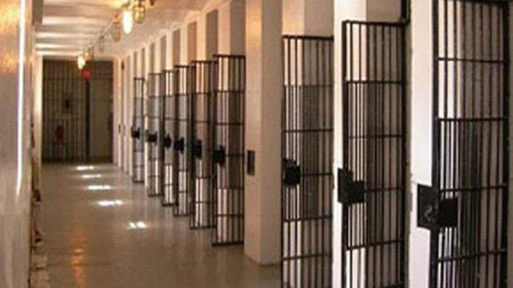 Netukaltheri Jail   Kerala News