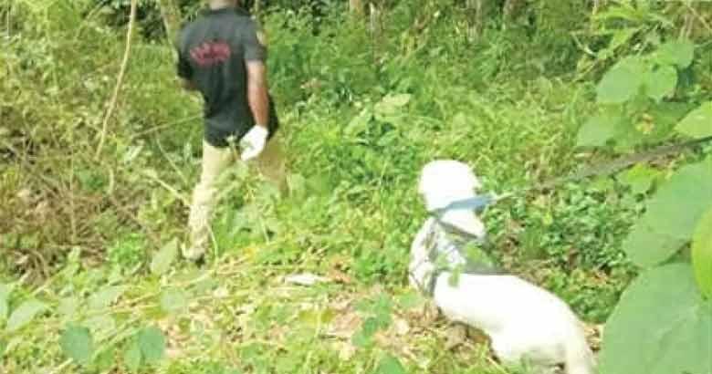 police dog   Kerala news