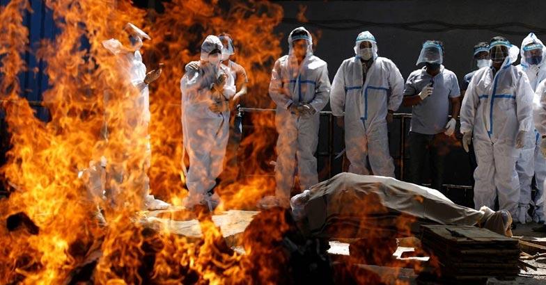 Covid death toll   Bignewslive
